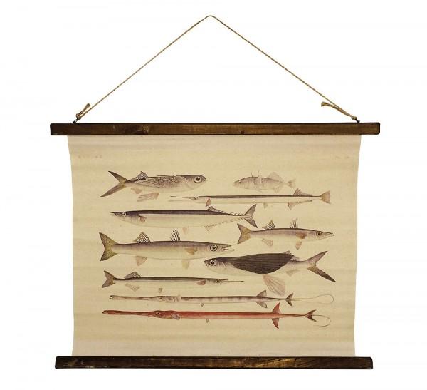Schulwandkarte Wandbild Fische Nostalgie-Stil Leinwand 65x52cm