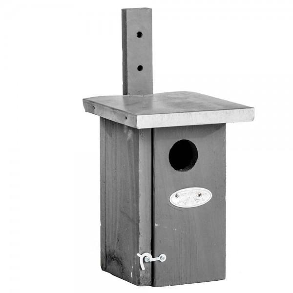 """*NEU*: Futterstelle/Nistkasten """"Zaunkönig"""" aus Holz, grau"""